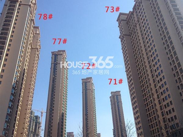 大名城71、72、73、77、78#工程进度(2015.2)