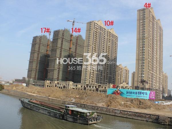 中海凤凰熙岸4#、10#、14#、17#楼工程进度(2015.2)