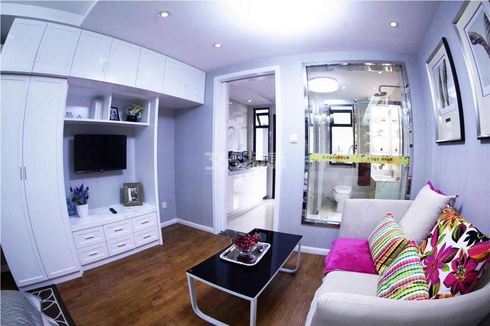 伟星幸福里约40平米单身公寓样板间-客厅