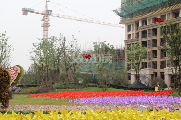 雅居乐国际花园项目19、20号楼施工进程图(2015.9)