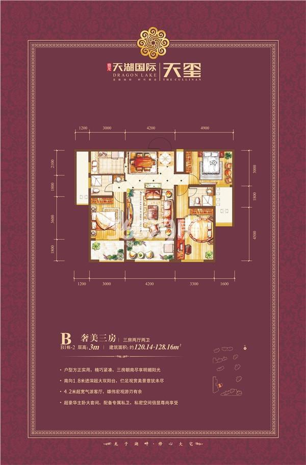天湖国际户型图B1-2 三房两厅125㎡