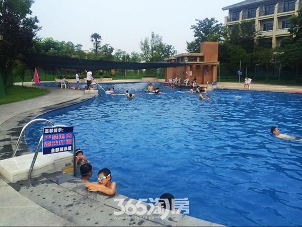 金都檀宫游泳池
