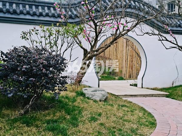 中建昆明澜庭园林景观图(2017.4.24)