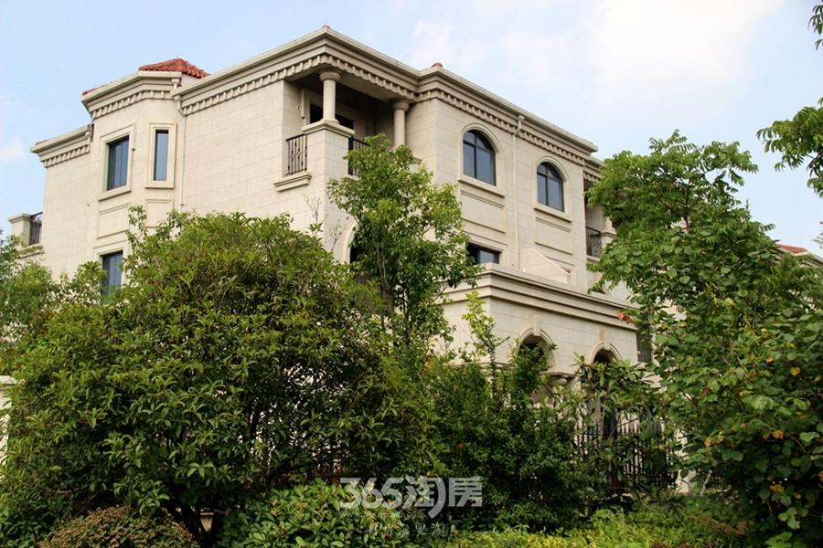 信德半岛别墅实景图(2017.8摄)